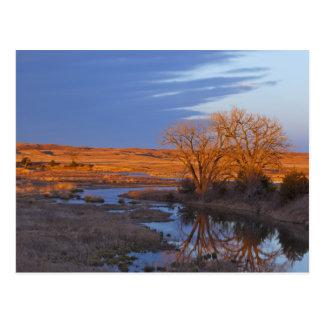 Bañado en luz de la puesta del sol el río del cála postales