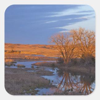 Bañado en luz de la puesta del sol el río del pegatina cuadrada