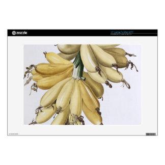 Banana, 1816 skin for laptop
