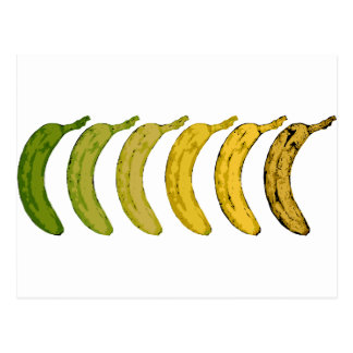 Banana Evolution Postcard