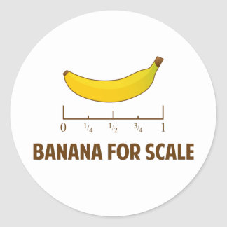 Banana For Scale Classic Round Sticker