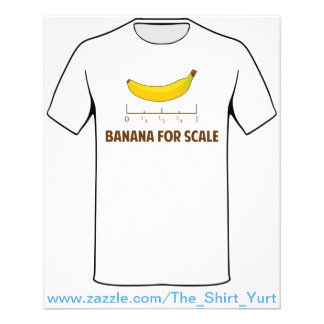 Banana For Scale Flyer