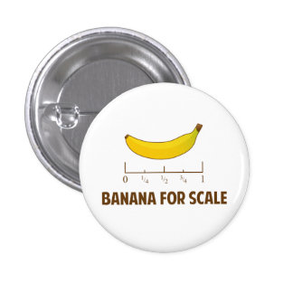 Banana For Scale Pinback Button