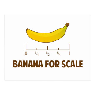 Banana For Scale Postcard