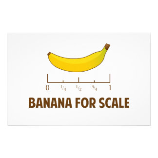 Banana For Scale Stationery