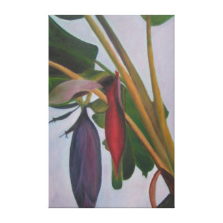 BANANA INFLORESCENCE II Wrapped Canvas