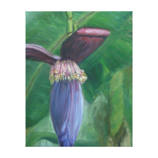 BANANA INFLORESCENCE Wrapped Canvas