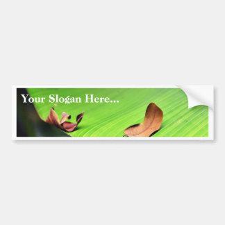 Banana Leaf Bumper Sticker