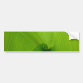 Banana Leaf Bumper Stickers
