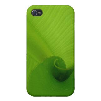 Banana Leaf iPhone 4 Cover