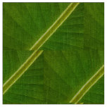 Banana Leaf Macro Fabric