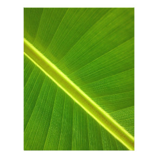 Banana Leaf Macro Flyer