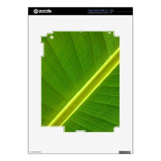 Banana Leaf Macro iPad 2 Decals