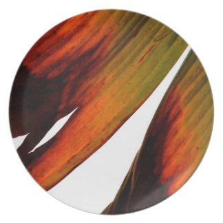 Banana Leaf Party Plates