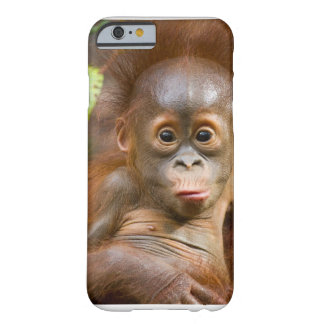 Banana phone barely there iPhone 6 case