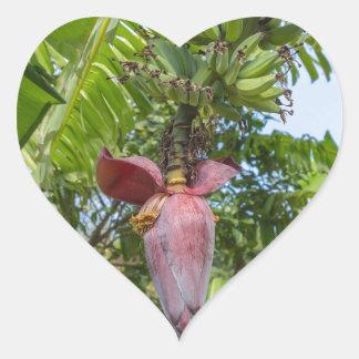 Banana plantation in Sok Kwu Wan Lamma Island Heart Sticker