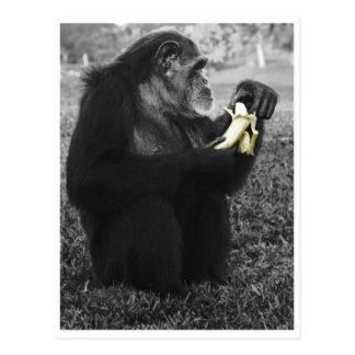 Banana Post Cards