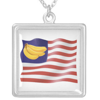 Banana Republic Silver Plated Necklace