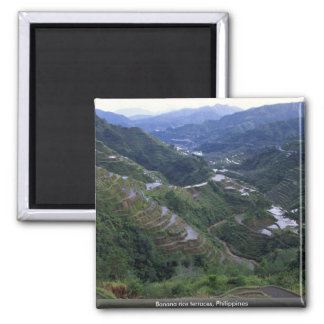 Banana rice terraces, Philippines 2 Inch Square Magnet