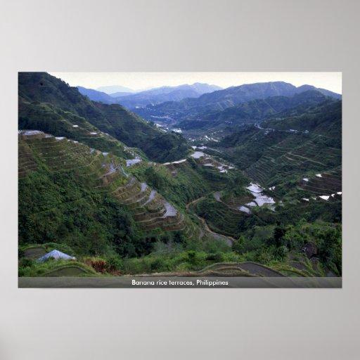 Banana rice terraces, Philippines Print