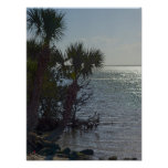 Banana River Palm Trees Painterly Poster