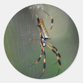 Banana Spider Classic Round Sticker