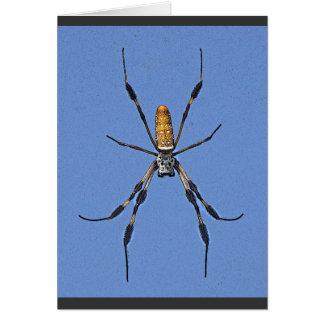 Banana Spider Close Up Card