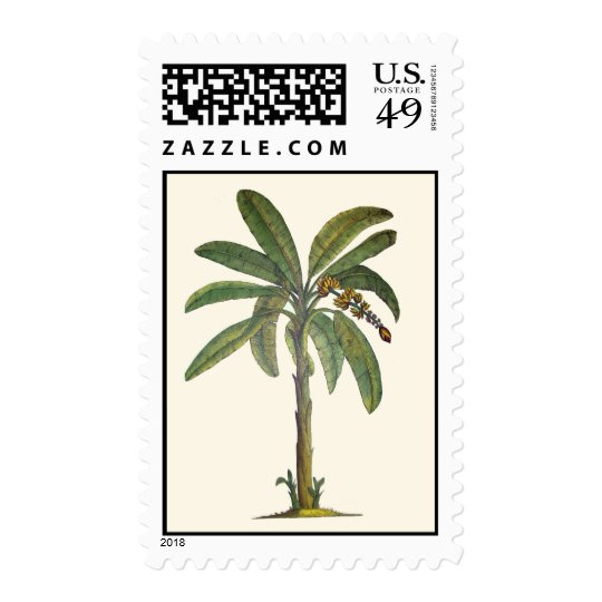 Banana Tree Botanical Stamp