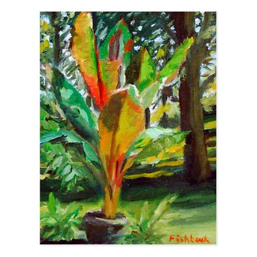 Banana Tree Plant Oil Still Life Painting Postcard