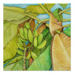 banana tree reproduction from painting poster
