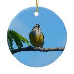 Bananaquit Bird and Blue Sky Photography Ceramic Ornament