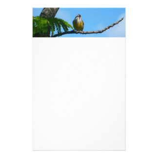 Bananaquit Bird and Blue Sky Photography Stationery