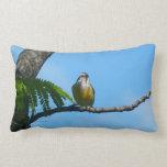 Bananaquit Bird and Blue Sky Photography Throw Pillow