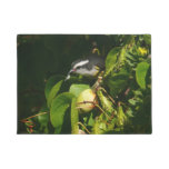 Bananaquit Bird Eating Tropical Nature Photography Doormat