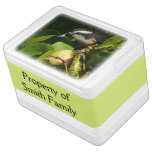 Bananaquit Bird Eating Tropical Nature Photography Drink Cooler