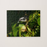 Bananaquit Bird Eating Tropical Nature Photography Jigsaw Puzzle