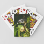 Bananaquit Bird Eating Tropical Nature Photography Playing Cards