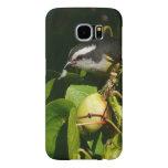 Bananaquit Bird Eating Tropical Nature Photography Samsung Galaxy S6 Case