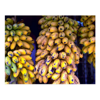 Bananas for sale at market, Puerto Rico Postcard