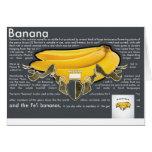 Bananas PostCard Cartoes