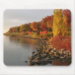 banco de Fall River Tapetes De Raton