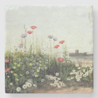 Banco de las flores del verano posavasos de piedra
