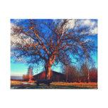 Banco de madera debajo de un árbol lienzo envuelto para galerías