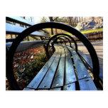 Banco de parque único en Central Park, NYC Tarjeta Postal