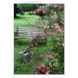 Banco del jardín y tarjeta de los rosas