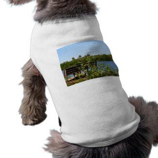 Banco en muelle con el cielo azul de la reserva na camisa de perrito