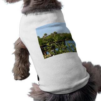 Banco en muelle con el cielo azul de la reserva na prenda mascota