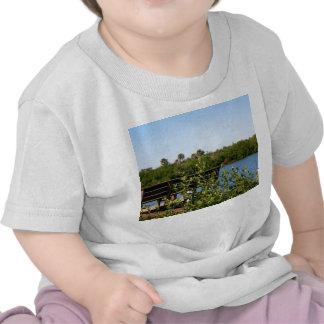Banco en muelle con el cielo azul de la reserva camisetas