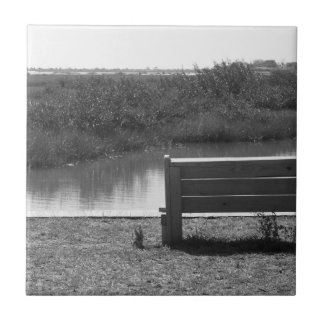 Banco por la imagen blanco y negro del río azulejo ceramica