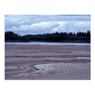 Bancos de arena del río de Koyukuk Tarjeta Postal